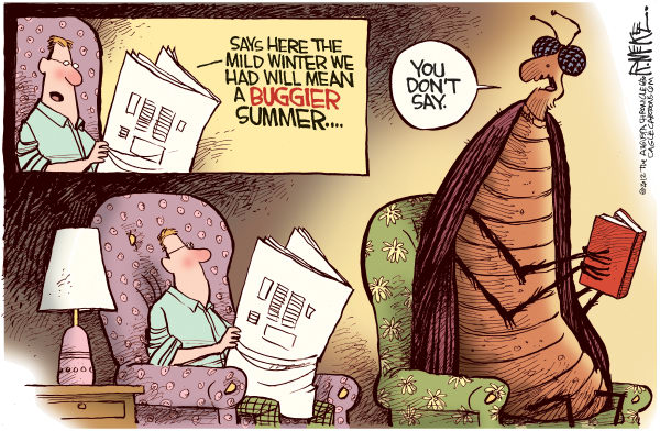 Summertime insects Rick McKee, The Augusta Chronicle