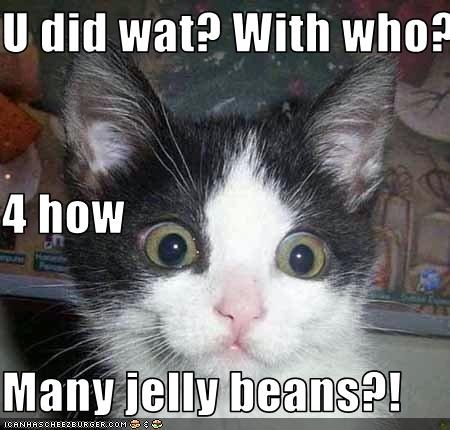 Jelly Bean Cat Surprise
