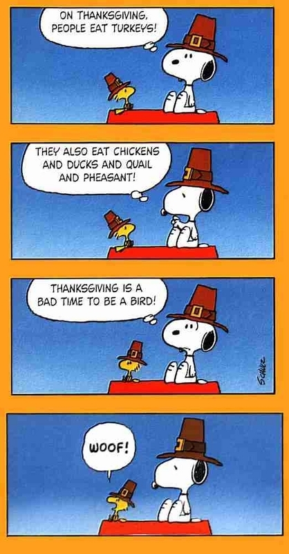 Turkey Snoopy