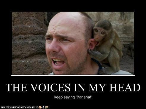 Voices meme FP