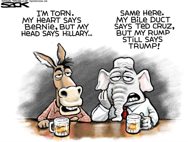 Dems vs Repubs Steve Sack The Minneapolis Star Tribune