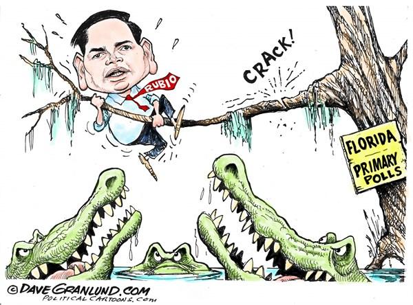 Rubio and Florida Dave Granlun, Politicalcartoons com