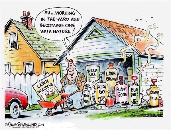 Garden Issues Dave Granlund Politicalcartoons com