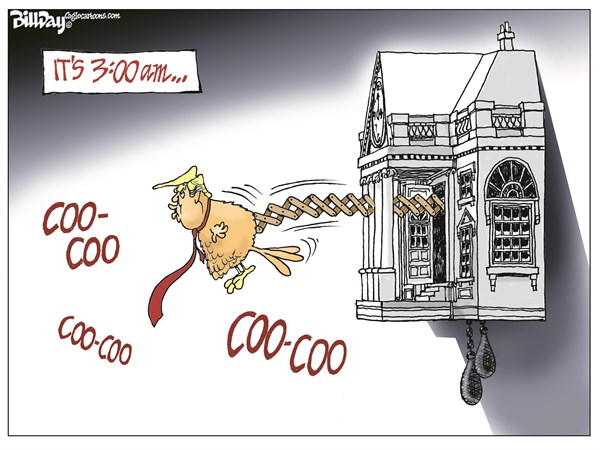 Coo Coo Trump Bill Day Cagle Cartoons