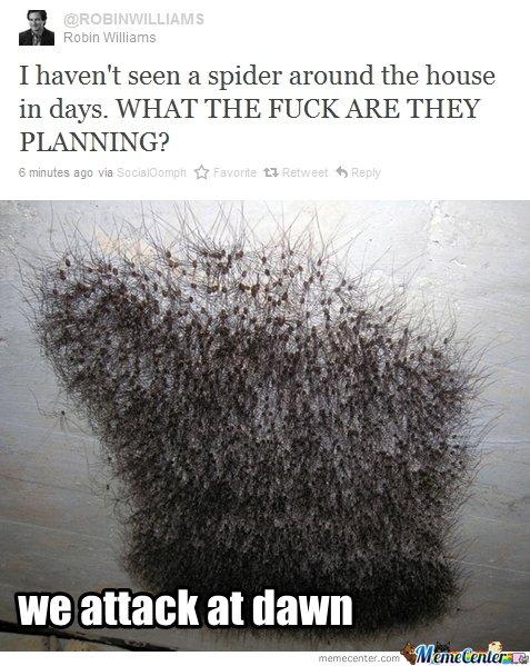 Spiders en mass Meme