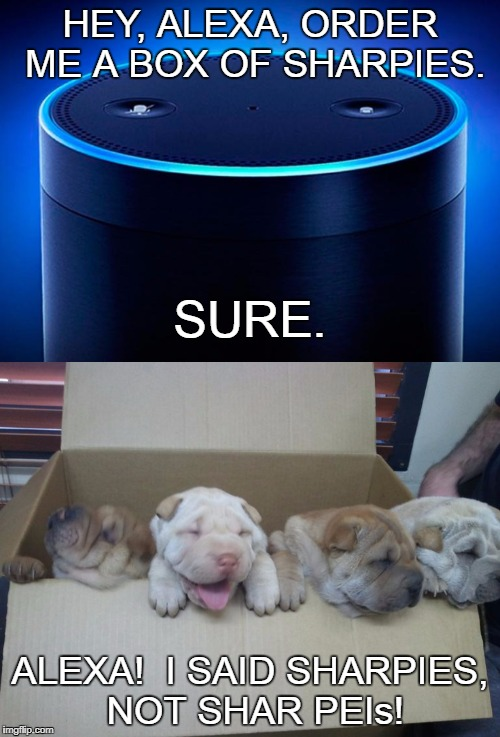 Alexa Ordering Meme