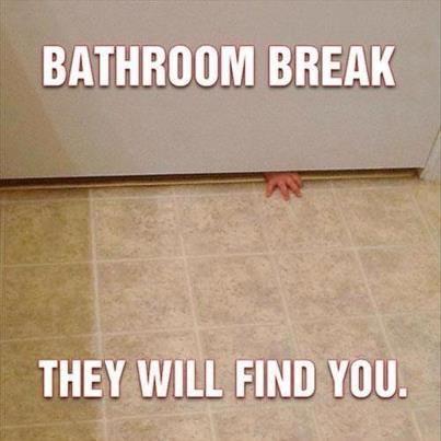 Bathroom Break Not Meme