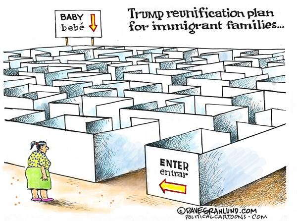 Trump Family Reunification Plan Dave Granlund PoliticalCartoons com
